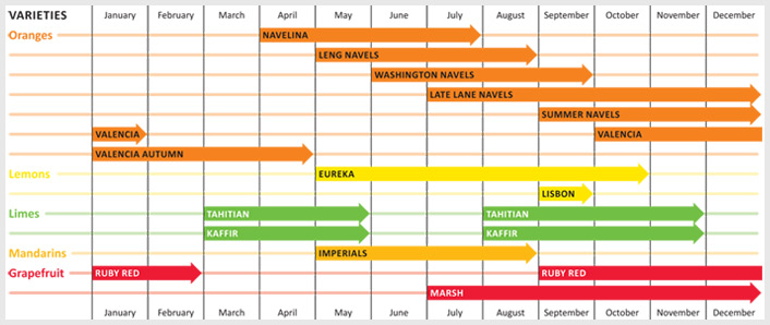 Production Calendar for Ingerson Citrus